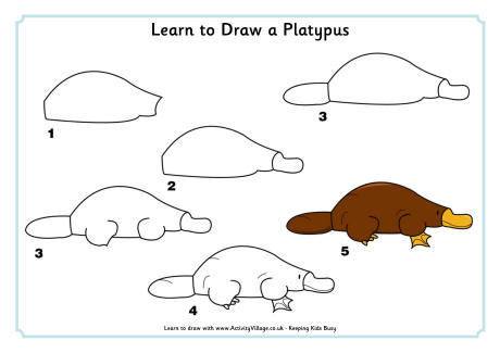 learn_to_draw_a_platypus_460_0