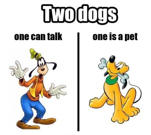 two-dogs-one-can-talk-one-is-a-pet_1373